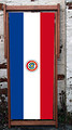 National flag of Paraguay World Cup designer deckchair